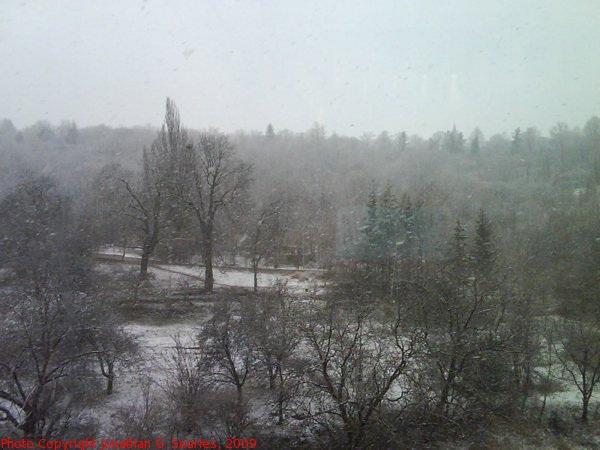 Snow in Radlicka, Prague, CZ, 2009