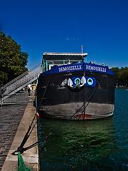 Demoiselle-2644