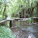 Le pont du violon - Moisenay (77)