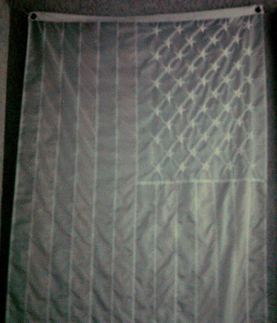 American Flag in Shadow (0010)
