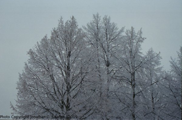 Snow in Sidliste Haje, Picture 2, Prague, CZ, 2009