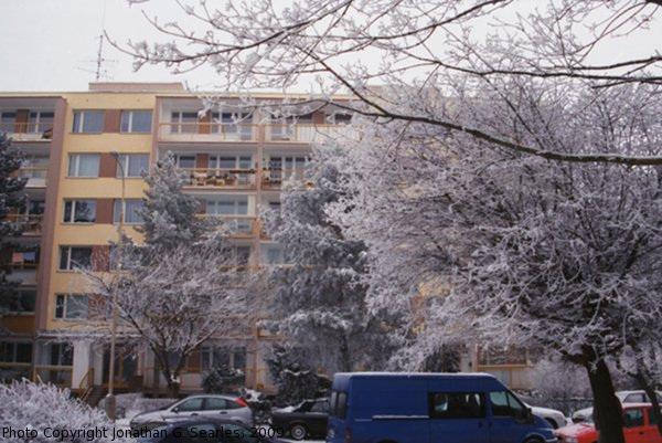 Snow in Sidliste Haje, Picture 3, Prague, CZ, 2009