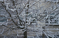 Snow in Sidliste Haje, Picture 4, Prague, CZ, 2009