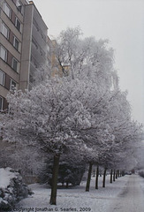 Snow in Sidliste Haje, Picture 6, Prague, CZ, 2009