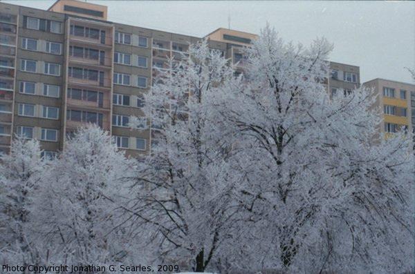 Snow in Sidliste Haje, Picture 7, Prague, CZ, 2009