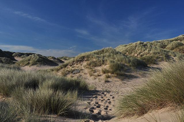 Foveran dunes