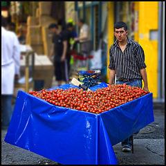 tomato trader....