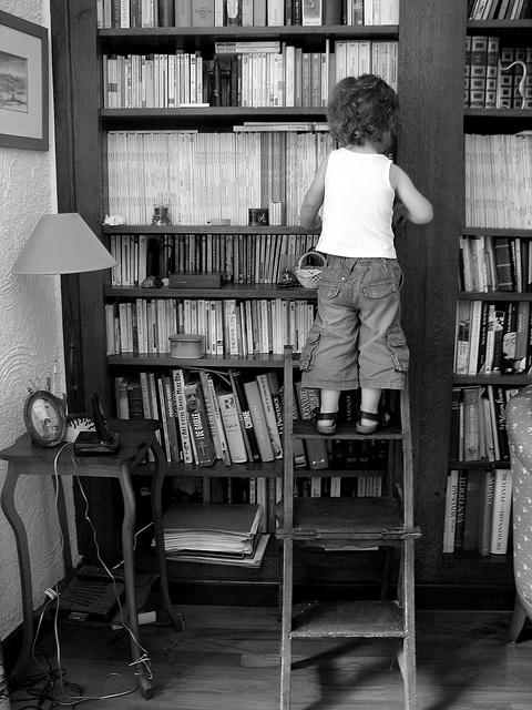 A la recherche d'un livre.