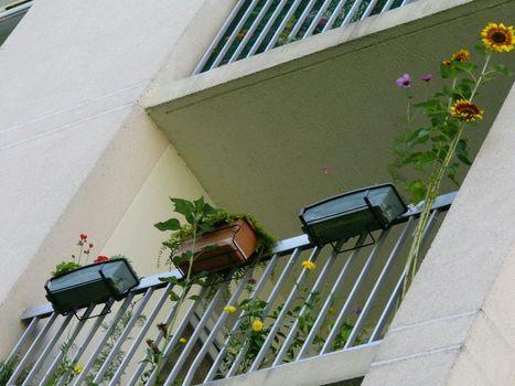 Aucun secret sur mon balcon ...
