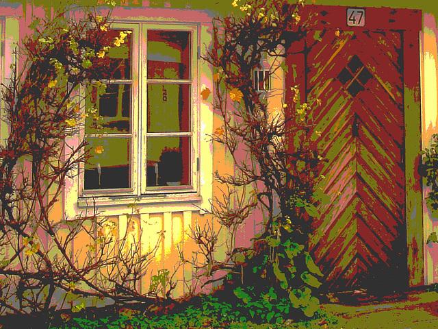 Maison / House  No-47  .  Båstad .  Suède / Sweden.  21-10-2008 - Postérisée
