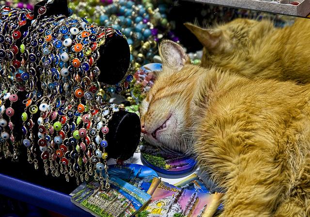 Garfield visiting the bazar