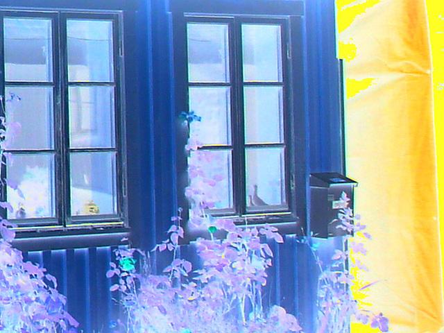 Maison / House  No-47  .  Båstad .  Suède / Sweden.  21-10-2008 - Négatif et couleurs ravivées