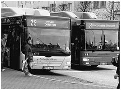 Bus suédois / Swedish buses - Helsingborg / Suède - Sweden.  22 octobre 2008- N & B