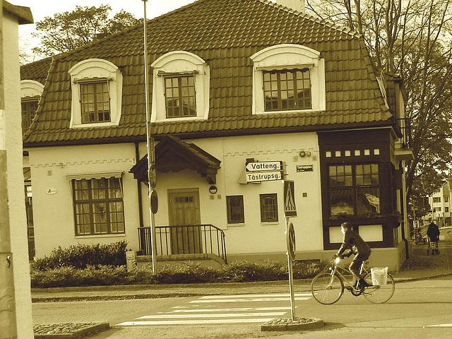 Vatteng biker area -  Zone Vatteng pour jolie cycliste / Ängelholm en Suède / Sweden.  23 octobre 2008- Sepia