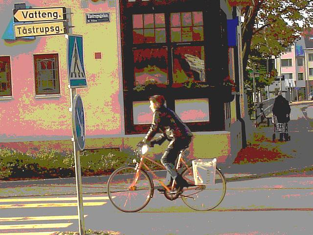 Vatteng biker area -  Zone Vatteng pour jolie cycliste / Ängelholm en Suède / Sweden.  23 octobre 2008Postérisée avec photofiltre