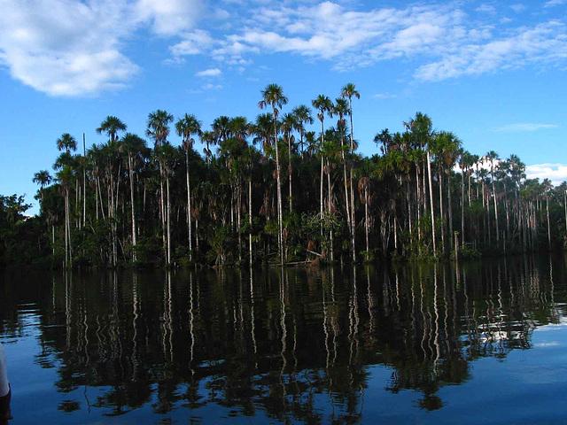 Lac Sandoval, Pérou