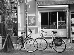 Regard sur vélos suédois / Handlesbanken Swedish Bikes eyesight  /  Ängelholm en Suède - Sweden .  23 octobre 2008- Noir et blanc - B & W.