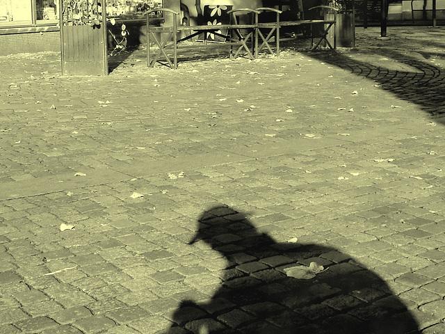L'ombre du photographe voyeur / Specialbokhandle shadowman candid shooter -  Ängelholm / Suède - Sweden .  23 octobre 2008- Photo ancienne