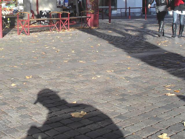 L'ombre du photographe voyeur / Specialbokhandle shadowman candid shooter - 23 octobre 2008