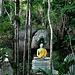 Buddha at the Wat Hin Lad