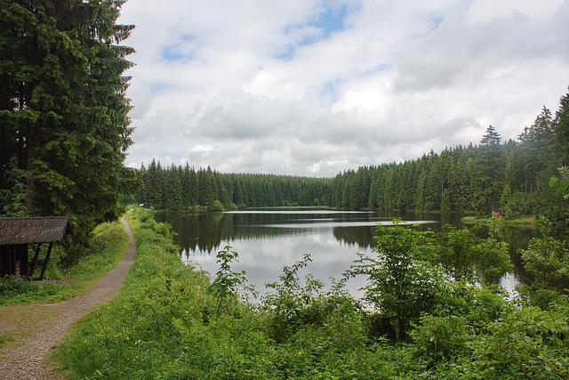 am Bärenbrucher Teich