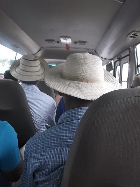 Chapeau panaméens / Panamanian hats.