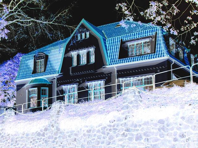 Maison luxueuse / Luxurious house - Effet de négatif