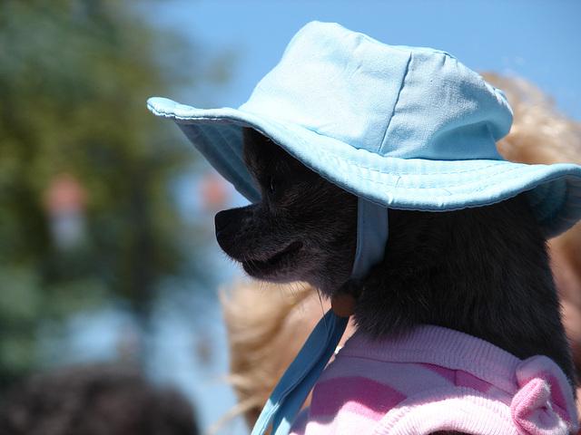 chapeau !!