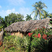 Une jolie petite case à Cuba