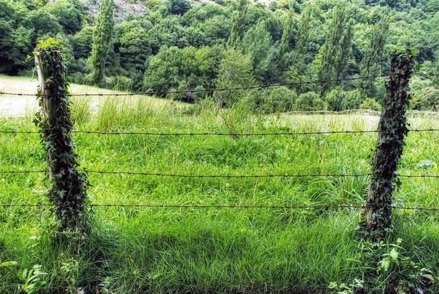 Natural barriers / Barreras naturales