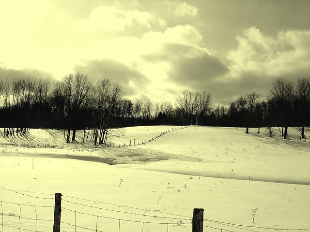 Paysages d'hiver à proximité de l'abbaye de St-Benoit-du-lac au Québec .  7 Février 2009 - Vintage