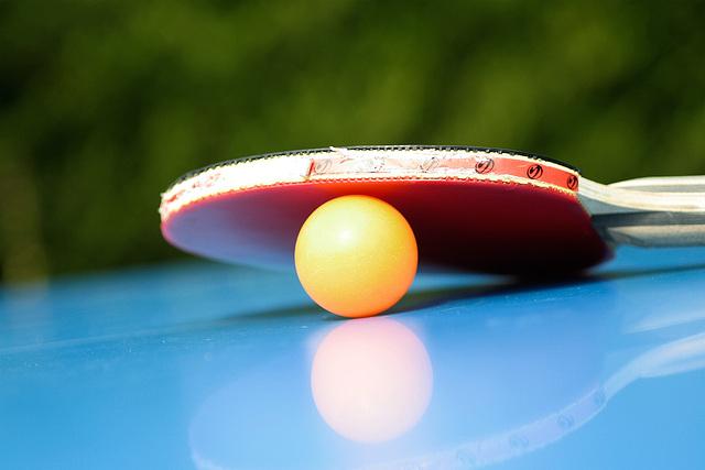 ping pong paradise