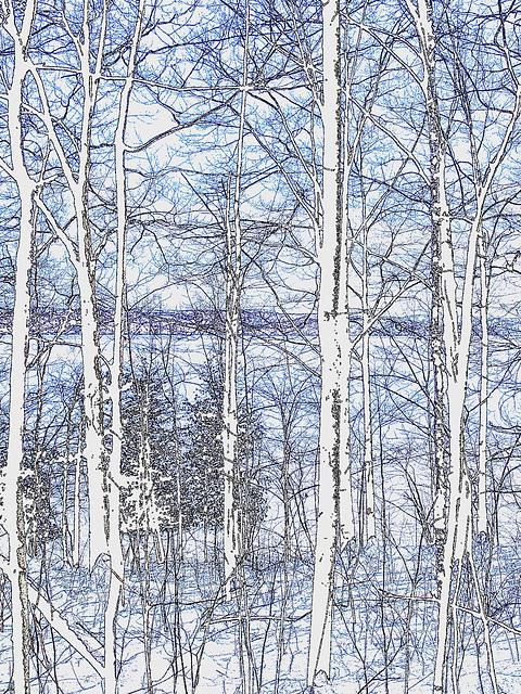 Paysages d'hiver à proximité de l'abbaye de St-Benoit-du-lac au Québec .  7 Février 2009- Contours de couleurs