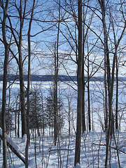 Paysages d'hiver à proximité de l'abbaye de St-Benoit-du-lac au Québec .  7 Février 2009