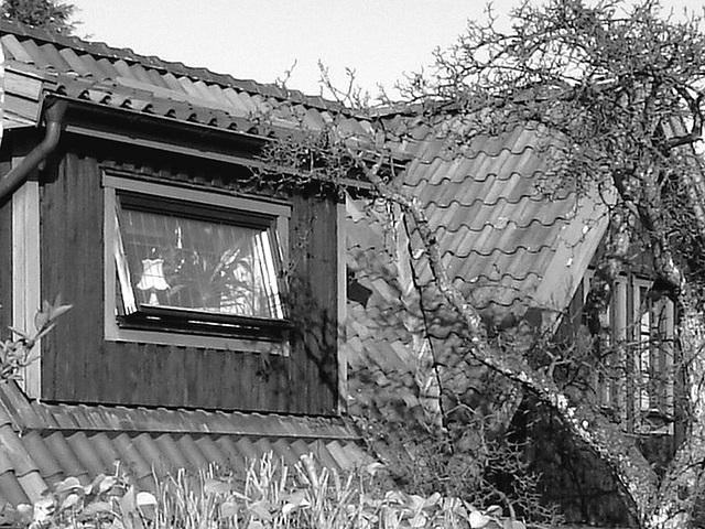 Ouverture vers éclairage suédois -  Opening toward swedish lightning .  Båstad  /  Suède - Sweden.  Octobre 2008- N & B