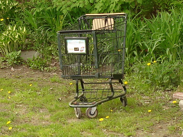 Panier roulant solitaire /  Lonely wheeling basket