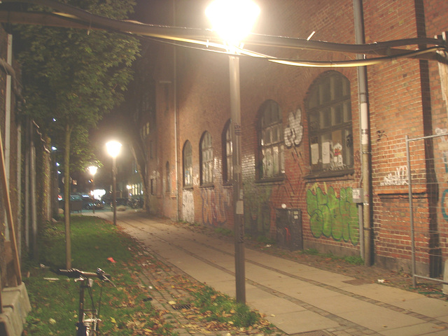 Lampadaires et graffitis / Street lamps & wall graffitis.   Copenhague. Danemark - 26-10-2008