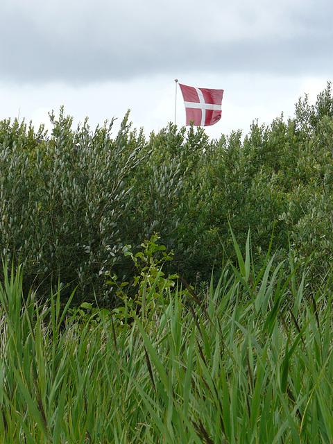 Piraten vor dem Wechseln der Flagge