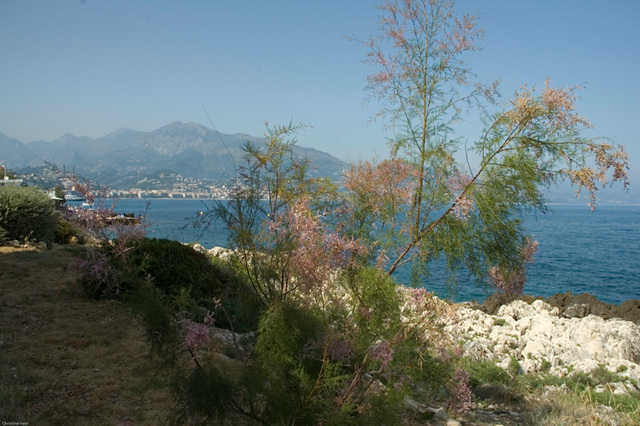 view of the bay of Menton