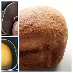 Speltbrood 1
