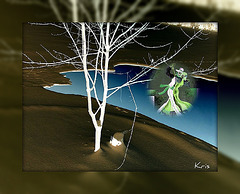 danseurs sur la glace