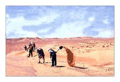 cantonniers du désert