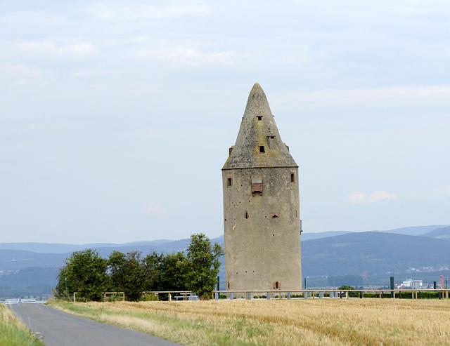 Der Turm der Falken
