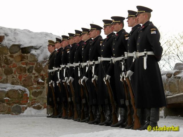Military parade at Gediminas Tower in Wilna