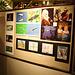 65.PhotogExhibit10.NPC.NW.WDC.4Sep2009
