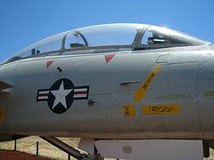 Grumman F-14 Tomcat (3168)