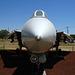 Grumman F-14 Tomcat (3170)