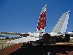 Grumman F-14 Tomcat (3171)