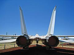 Grumman F-14 Tomcat (3172)