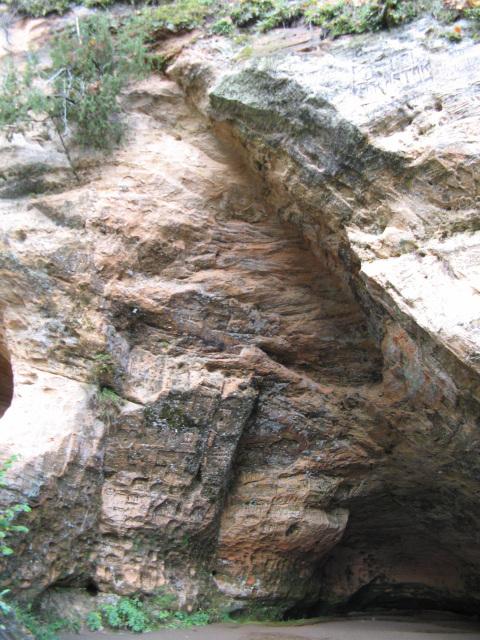 Gutmanio ola